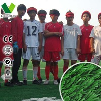 Football Artificial Plastic Turf Sport Court Flooring