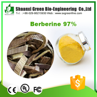 High Quality 97% Berberine in foods Berberine for Immune System