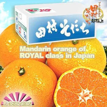 Fresh Japanese Mandarin Orange (AAA-class)