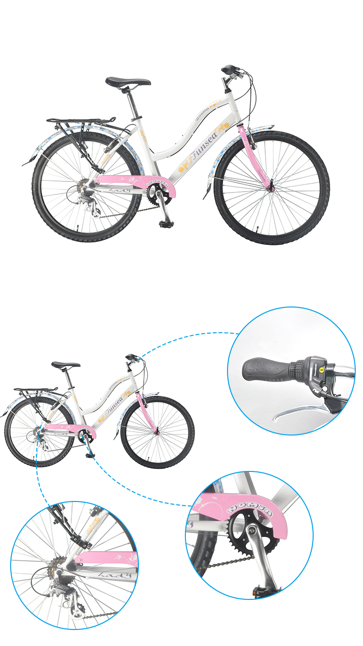 Funsea factory china custom wholesale price cheap 26 inch steel frame v brake women city bike ladies bicycle with OEM ODM