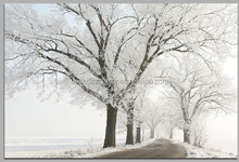 modern home decor snowscape LED canvas fiber optic pictures
