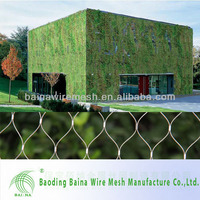 2014 hot sale Architectural Surface Plant Climbing Net/Zoo Mesh Stainless Steel Wire Rope Mesh