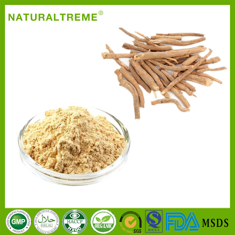 Raw Herb Material 5% withanolide Ashwagandha Extract Powder