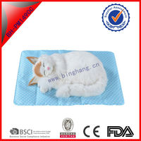 Wholesales High quality Reusable Fashion Pet Gel/SAP Ice cushion cold gel ice pack Summer Cool