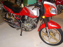 T Rex Motorcycle 150cc 200cc 250cc Air Cooled or Water Cooled