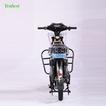 Classic 2 wheel heavy load factory price outdoor cargo electric bike