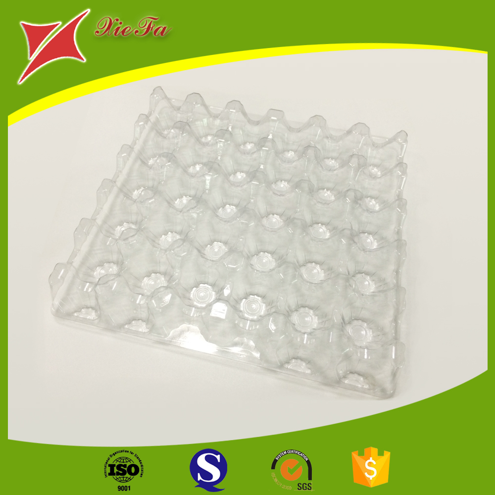 Good Quality disposable plastic quail eggs tray with PET material