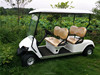 3kw mini golf car with 4 seats or 2 seats
