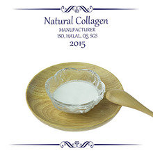 Wholesale private label new product type 2 collagen