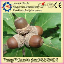 Shuliy acorn sheller machine/oak seed shelling machine price 0086-15838061253