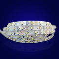 1 year warranty cheap prices factory lowest LED flexi strip light