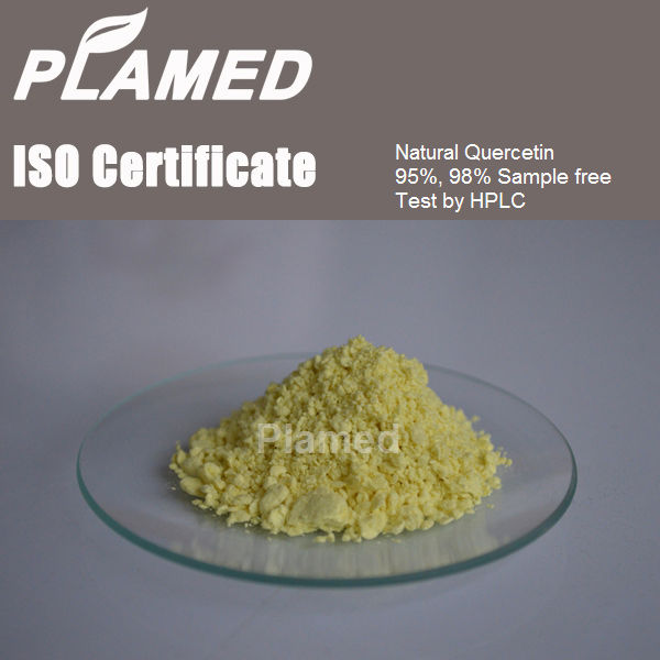 Buy quercetin dihydrate powder,raw material quercetin dihydrate