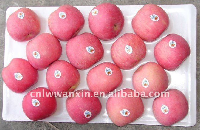 2016 high quality china red fuji apple price
