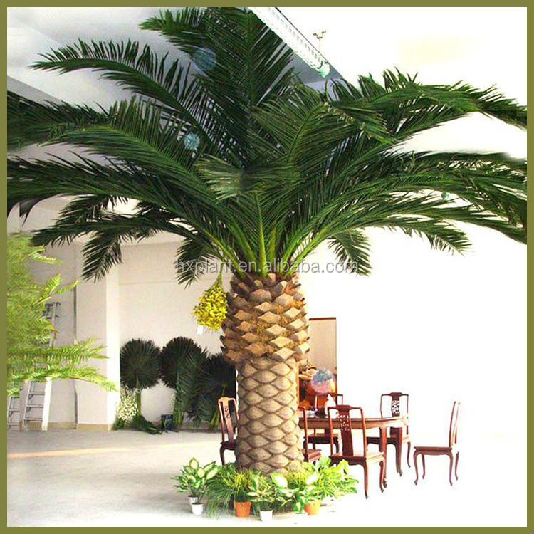 Cheap outdoor tall date palm tree artificial plastic date for Cheap trees