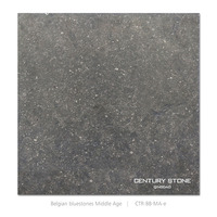 "12""x12"" Bluestones Middle Age Chinese Blue Limestone"