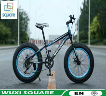 New product China wholesale Adult 7 speed 20 inch mountain bicycle/bike