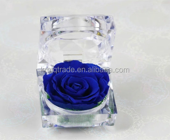 China Natural Real Touch Wholesale Preserved Roses Flower In Acrylic Ring Glass Boxes