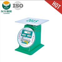 Spring dial scale with big pallet 200kg price computing weighing scale