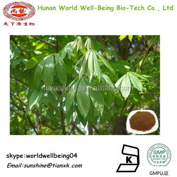 buckeye leaf extract / horse chestnut extract powder