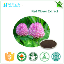 Free samples 2017 hot sale PAHs meet EU regulations biochanins 2.5% 8% 20% 40% isoflavone red clover extract