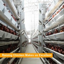 Hot Selling Classic H Type Automatic Chicken Egg Laying Equipment