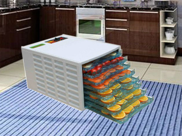 2014 hot sale fruit and vegetables dehydrator