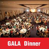 Gala Dinner / Party Management / Performance Show / StageBackdrop