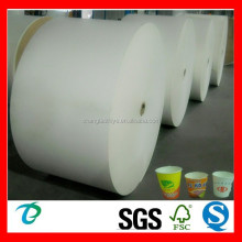 High quality offset printing pe coated papers