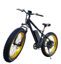 2019 Popular Fat Tire Electric Bicycle with Good Quality
