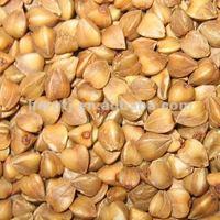 Roasted buckwheat kernel/groat buckwheat from china price