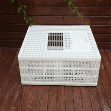 widely used Plastic poultry transportation cage for chicken, duck,broiler