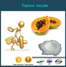 High Purity Papain / Papaya enzyme / Papain powder