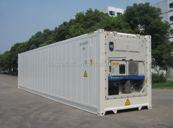 second hand reef container for frozen tilapia