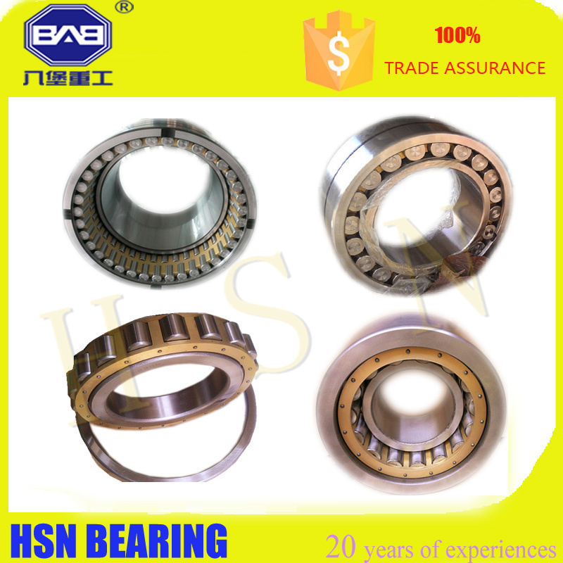 Bearing N219 Cylindrical Roller Bearing stock