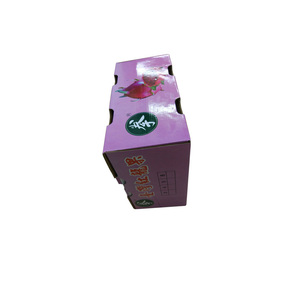 High Quality Professional Cardboard Fruit Paper Tray Master Carton Box boxes