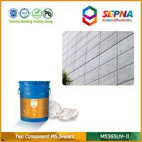 Two Component Construction MS Sealant for Building Joints Waterproof Sealing
