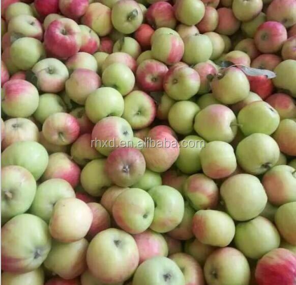 China wholesale bulk fresh red gala apple fruit