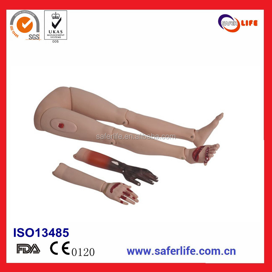 2017High Quality With CE ISO FDA the four limbs Traumatic wound Burning Wound Trauma limbs model