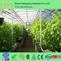 Hydroponics Nft Systems Low Price Greenhouse