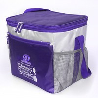 2015 top products cheap cooler bag food delivery bag picnic cooler Bag