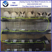 China factory rabbit farming equipments in india
