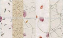 High Quality Handmade SAA Floral Papers