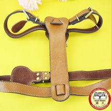 Fashion best selling pet harness for dog hot sales