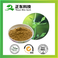 Pure Black Cohosh Extract Powder Type and Powder Form Triterpenoid saponins 2.5% HPLC