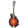 /product-detail/yunzhi-fully-handmade-solid-maple-wood-8-strings-mandolin-1007226979.html
