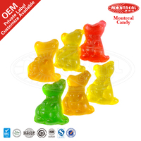 Kangaroo Shape Animal Shaped Jelly Candy