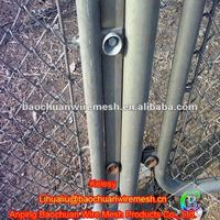 Galvanized 50*50mm tree protection chain link fence