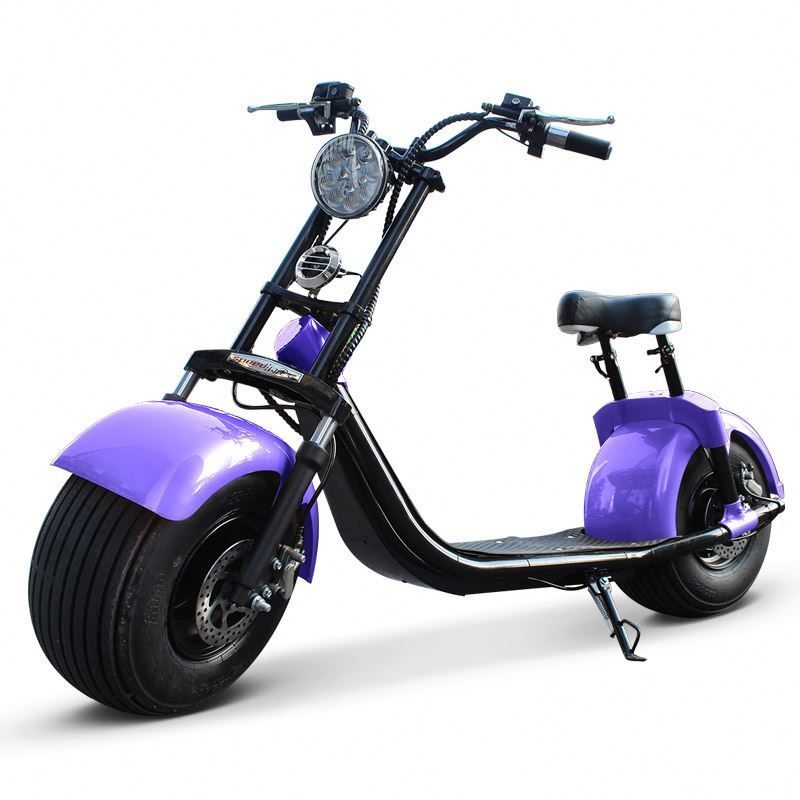SC10 DOGEBOS CITI COCO SCOOTER 1500W with CE approved