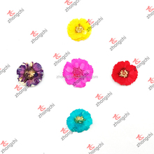 Fashion Colorful Nature Dry Hibiscus Flowers for Lockets Gifts (NDF50822)