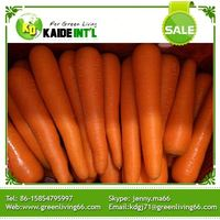 Wholesales Cheap 2016 China Fresh Carrots Lowest Price